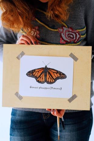 inktober_monarca_butterfly
